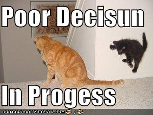 Funny-pictures-kitten-makes-poor-decision